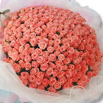 Picture of big bunch of flowers clip transparent stock Big Bunch of 150 Pink Roses | Send to Delhi, Noida or Ghaziabad ... clip transparent stock