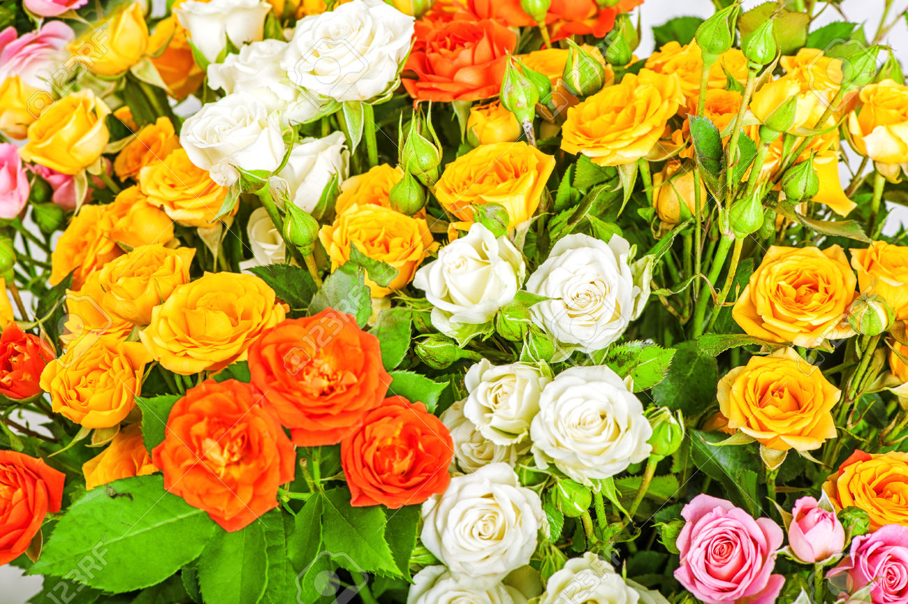 Picture of big bunch of flowers picture transparent library Defocus Big Bunch Of Beautiful Flowers. A Lot Of Multicolored ... picture transparent library