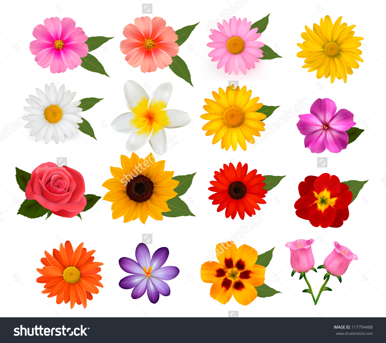 Picture of colorful flowers vector library download Big Beautiful Colorful Flowers Vector Illustration Stock Vector ... vector library download