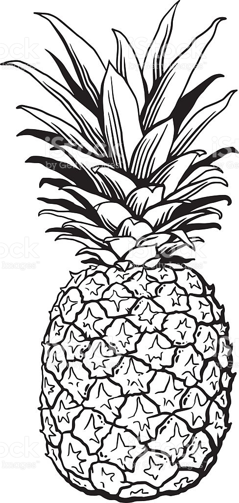 Picture of pineapple clipart black and white picture black and white download Pineapple clipart black and white 4 » Clipart Station picture black and white download