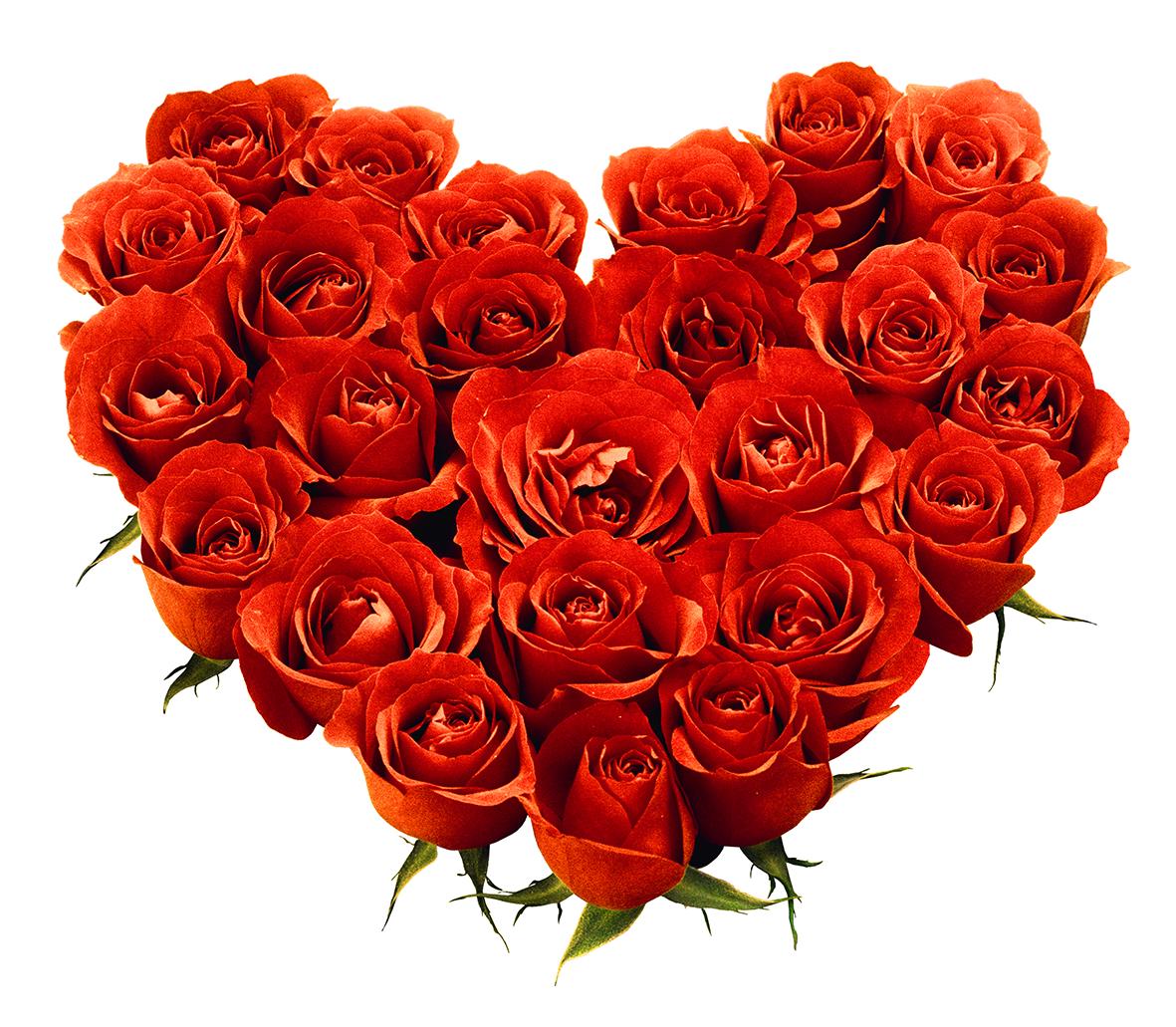 Flower emoji clipart. Rose png love