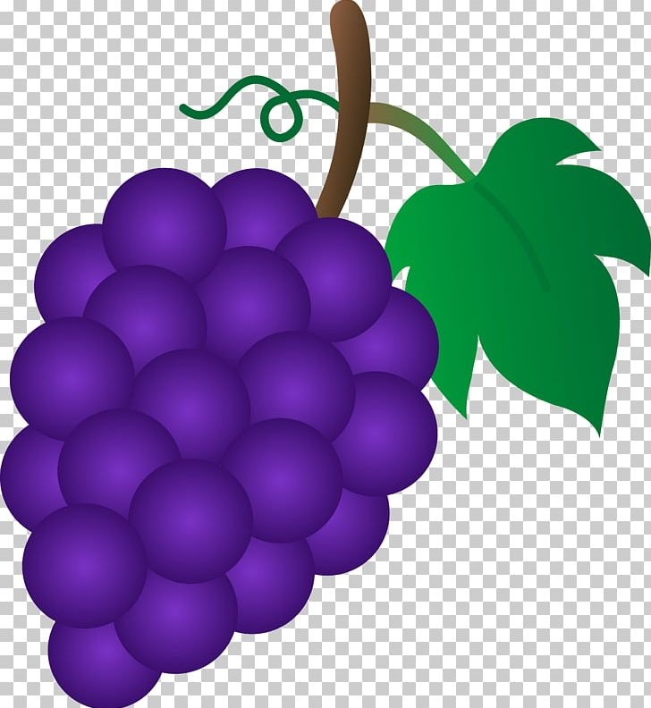 Pictures of grapes clipart svg library download Common Grape Vine Sultana PNG, Clipart, Cartoon, Cartoon ... svg library download