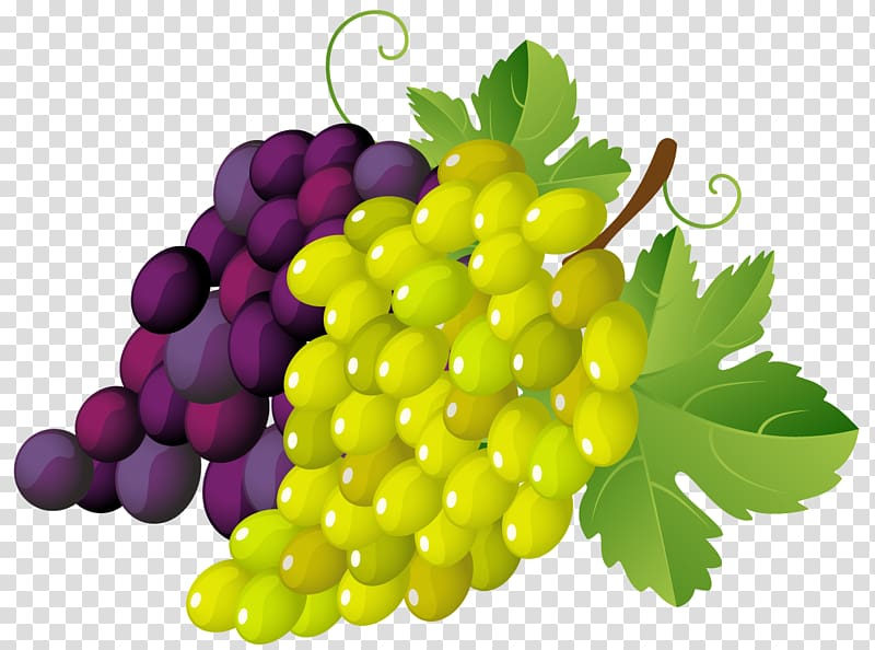 Pictures of grapes clipart image library stock Bunch of grapes , Grapevines .xchng , Painted Grapes ... image library stock