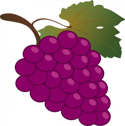 Pictures of grapes clipart clip library download Free Grapes Pictures, Download Free Clip Art, Free Clip Art ... clip library download