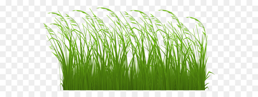 Pictures of tall grass with flowers clipart banner black and white library Tall grass clipart 1 » Clipart Station banner black and white library