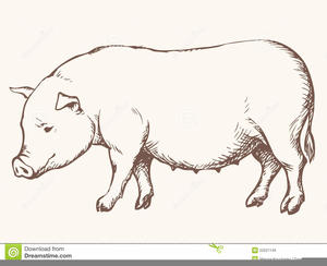 Pig head side view clipart clip library library Pig Side View Clipart | Free Images at Clker.com - vector ... clip library library