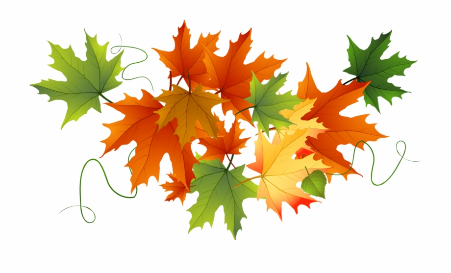 Pile of green leaves clipart without background jpg freeuse Falling Leaves Clipart Png - Fall Leaves No Background Free ... jpg freeuse