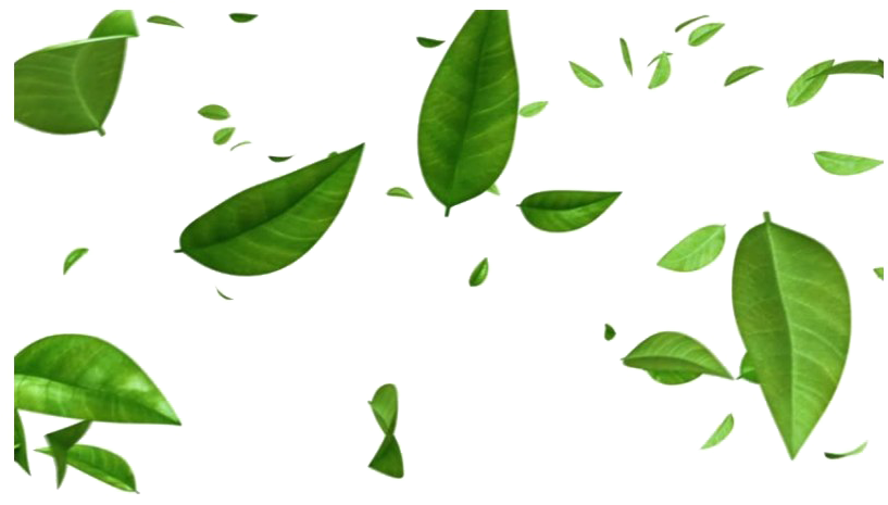 Pile of green leaves clipart without background image transparent library HD Green Leaves Png Free Image - Transparent Background ... image transparent library