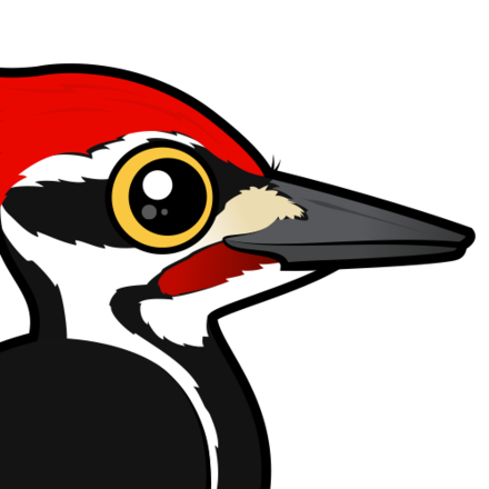 Pileated woodpecker clipart banner free download Cute Pileated Woodpecker by Birdorable < Meet the Birds banner free download