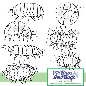 Pill bugs clipart svg free library Roly Poly / Pill Bug and Sow Bug Clip Art Set svg free library
