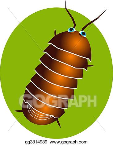 Pill bugs clipart banner transparent Clip Art - Pillbug. Stock Illustration gg3814989 - GoGraph banner transparent