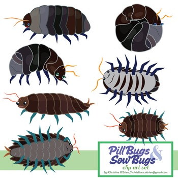 Pill bugs clipart graphic free download Roly Poly / Pill Bug and Sow Bug Clip Art Set | TpT Clipart ... graphic free download