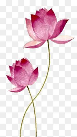 Lotus flower clipart free download png transparent stock 2019 的 Pink Lotus, Lotus Clipart, Pink, Lotus PNG ... png transparent stock