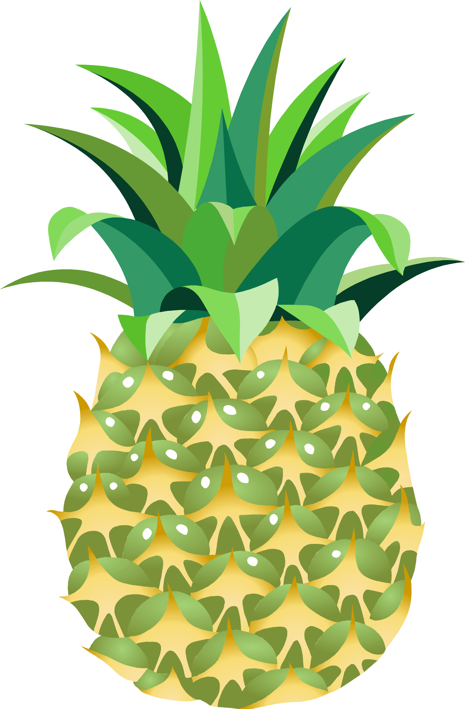 Pineapple flower clipart clip transparent download Pineapple Fourteen | Isolated Stock Photo by noBACKS.com clip transparent download
