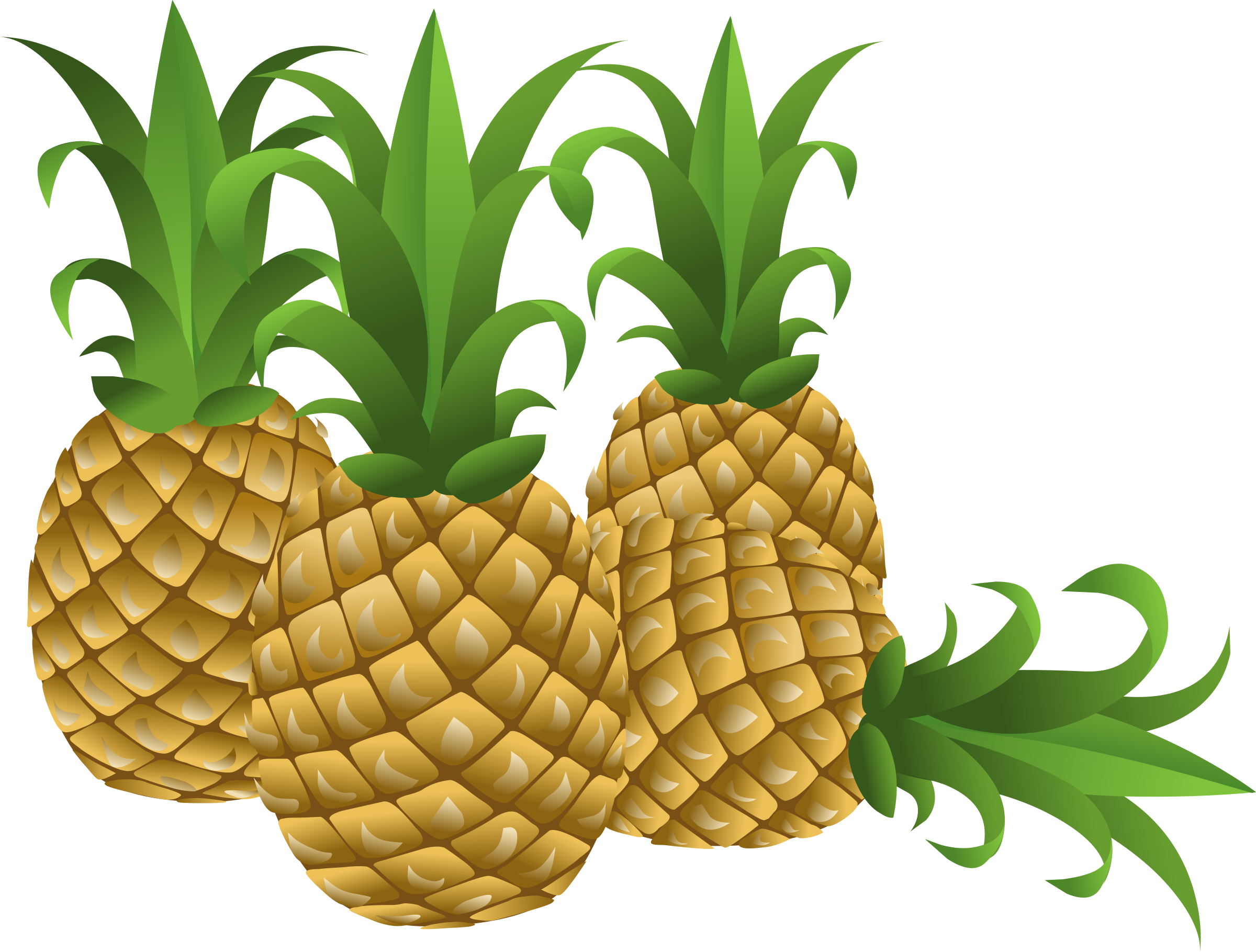 Pine apple clipart svg free download Clipart - Food Pineapple svg free download