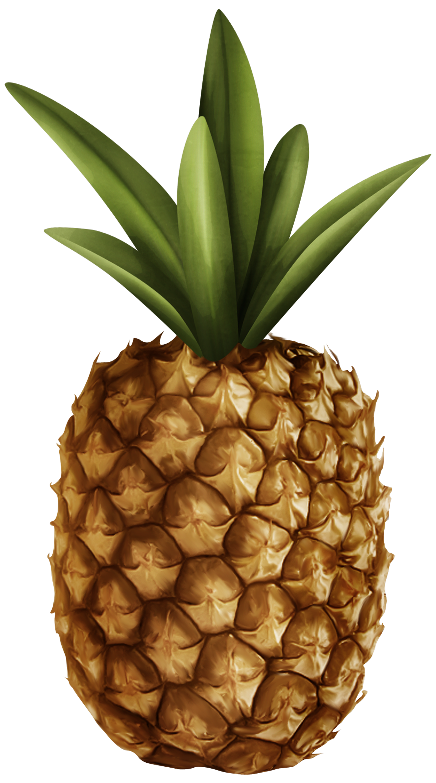 Pineapple flower clipart clipart black and white Pineapple PNG Clipart - Best WEB Clipart clipart black and white