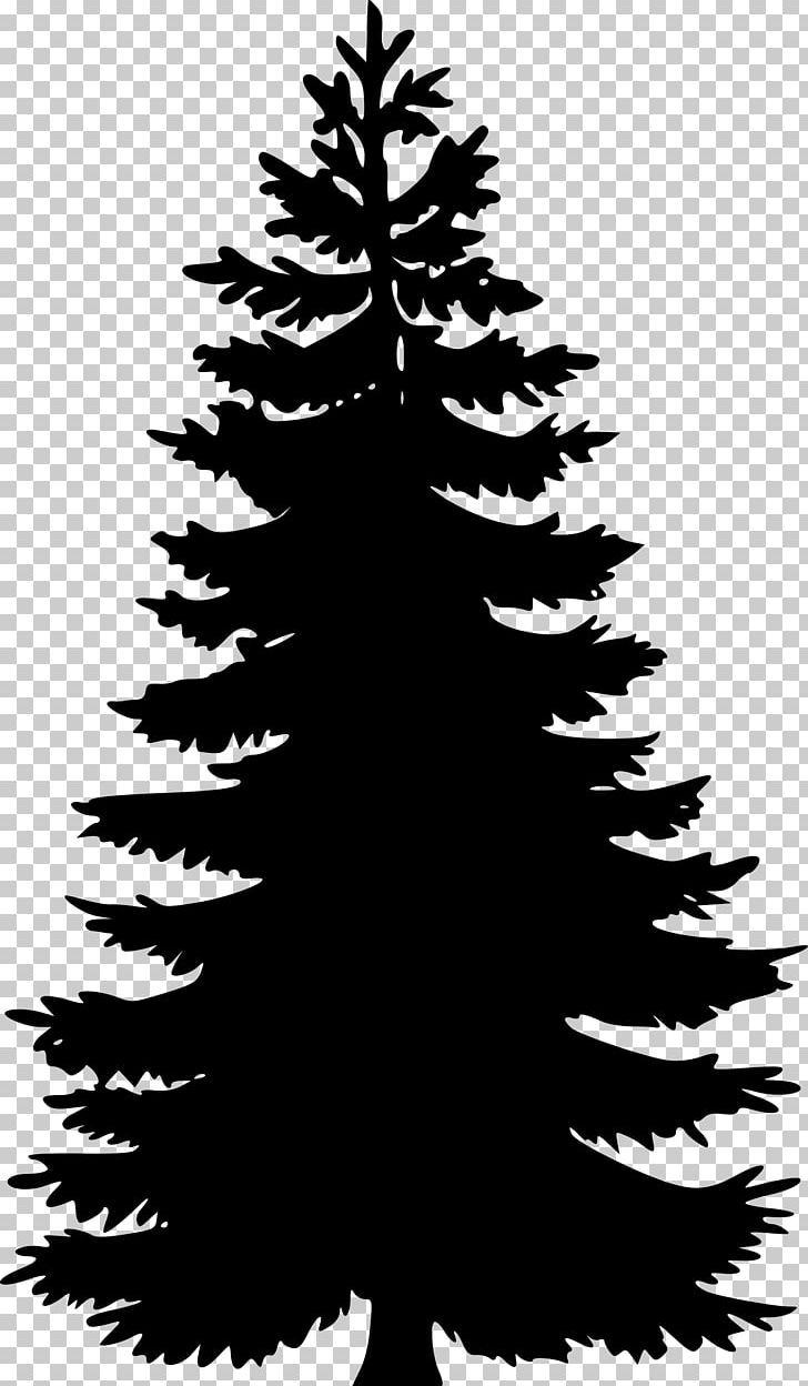 Pine silhouette clipart black and white banner black and white download Pine Tree Fir Silhouette PNG, Clipart, Black And White ... banner black and white download