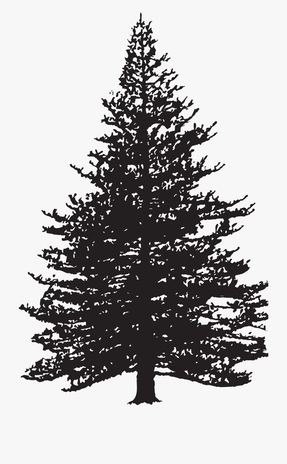 Pine silhouette clipart black and white clip art library download Pine Tree Silhouette Clip Art Image - Pine Tree Clip Art ... clip art library download