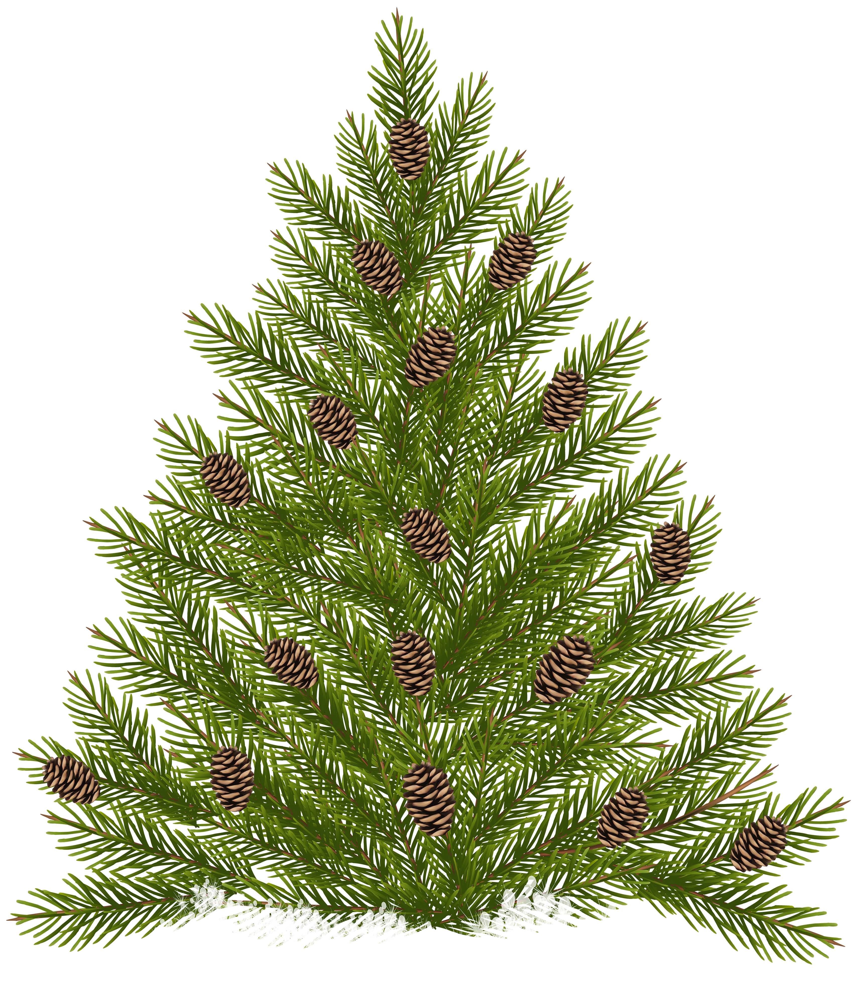 Pine tree border clipart image freeuse stock Pine Tree with Cones Transparent PNG Clip Art | Gallery ... image freeuse stock