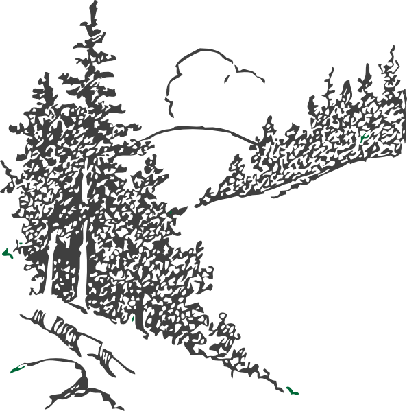 Pine tree forest clipart jpg transparent Pine Trees Clip Art at Clker.com - vector clip art online, royalty ... jpg transparent