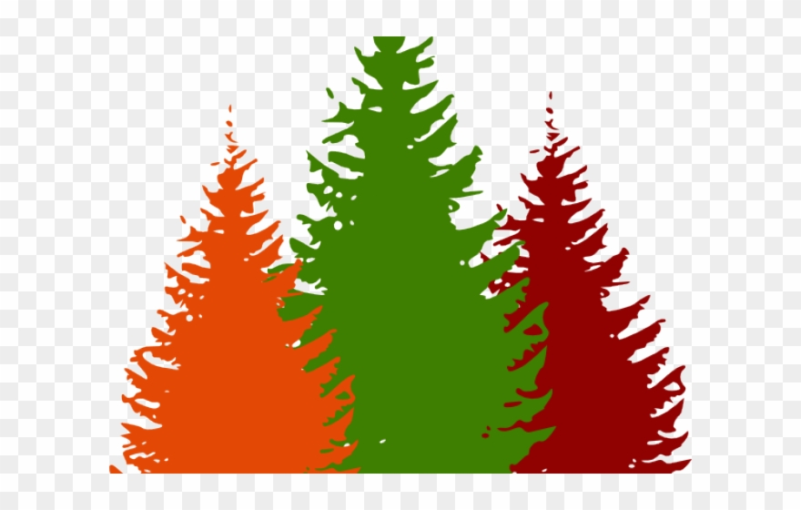 Pine tree illustration clipart svg stock Pine Tree Clipart Forest - Png Download (#2920902) - PinClipart svg stock