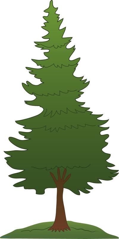 Pine tree illustration clipart jpg free Christmas Tree Illustration clipart - Pine, Tree, Leaf ... jpg free