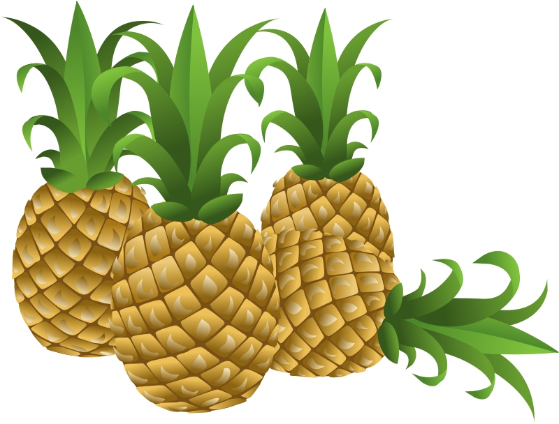 Pineapple flower clipart clip royalty free stock 28+ Collection of Free Pineapple Clipart | High quality, free ... clip royalty free stock