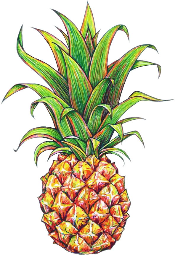 Pineapple flower clipart clip transparent tumblr fruit picsart pineapple clip transparent