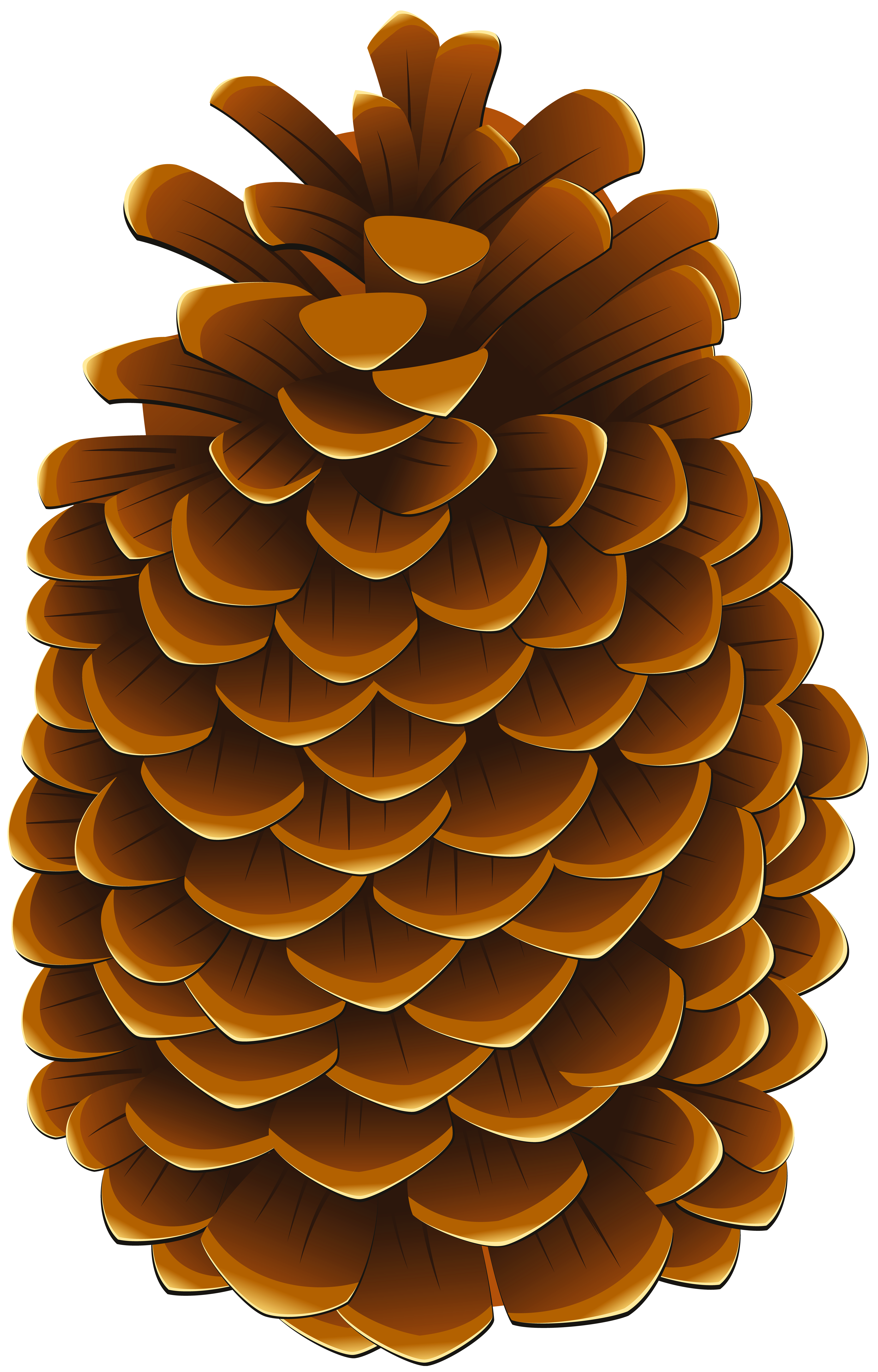 Pinecone clipart vector black and white Pinecone PNG Clip Art Image | Gallery Yopriceville - High ... vector black and white