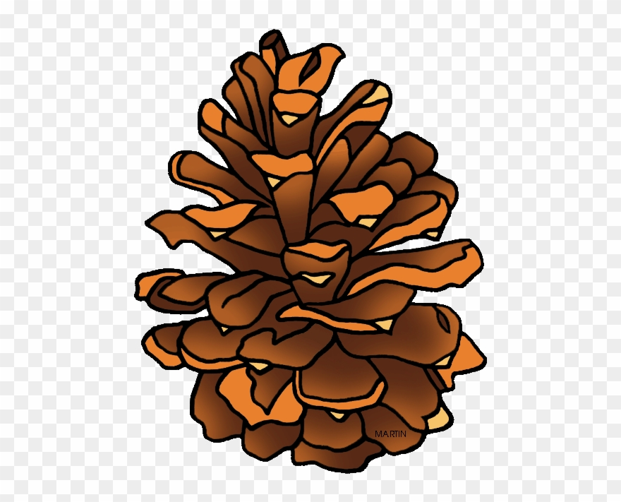Pinecone clipart clipart transparent library Clipart Pine Cone - Png Download (#193680) - PinClipart clipart transparent library
