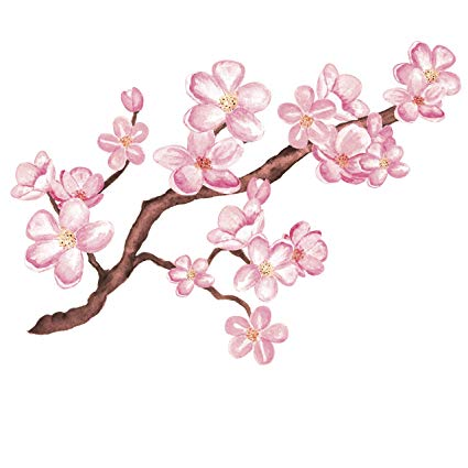 Pink cherry blossoms clipart