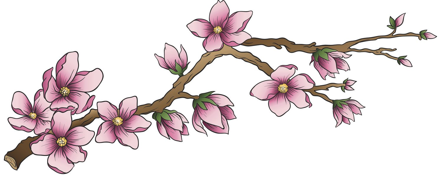 Pink cherry blossoms clipart clipart freeuse stock Pretty Detailed Chinese Japanese Pink Cherry Blossom Branch Vinyl Decal  Sticker (4\