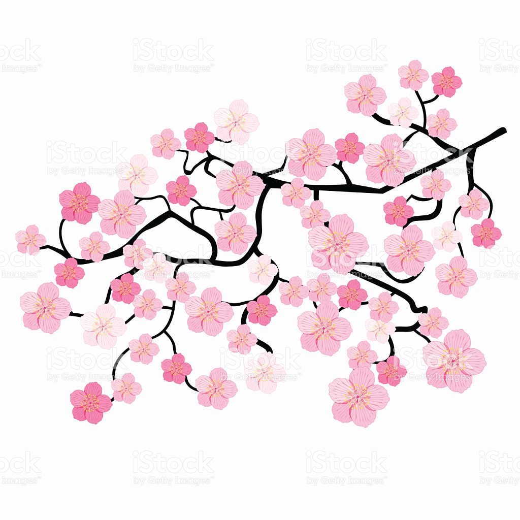 Pink cherry blossoms clipart picture transparent library Blossoms Clipart   Free download best Blossoms Clipart on ... picture transparent library