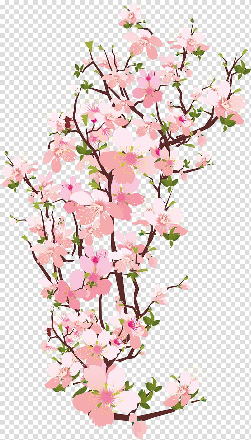 Pink cherry blossoms clipart banner freeuse Pink cherry blossoms art, National Cherry Blossom Festival ... banner freeuse