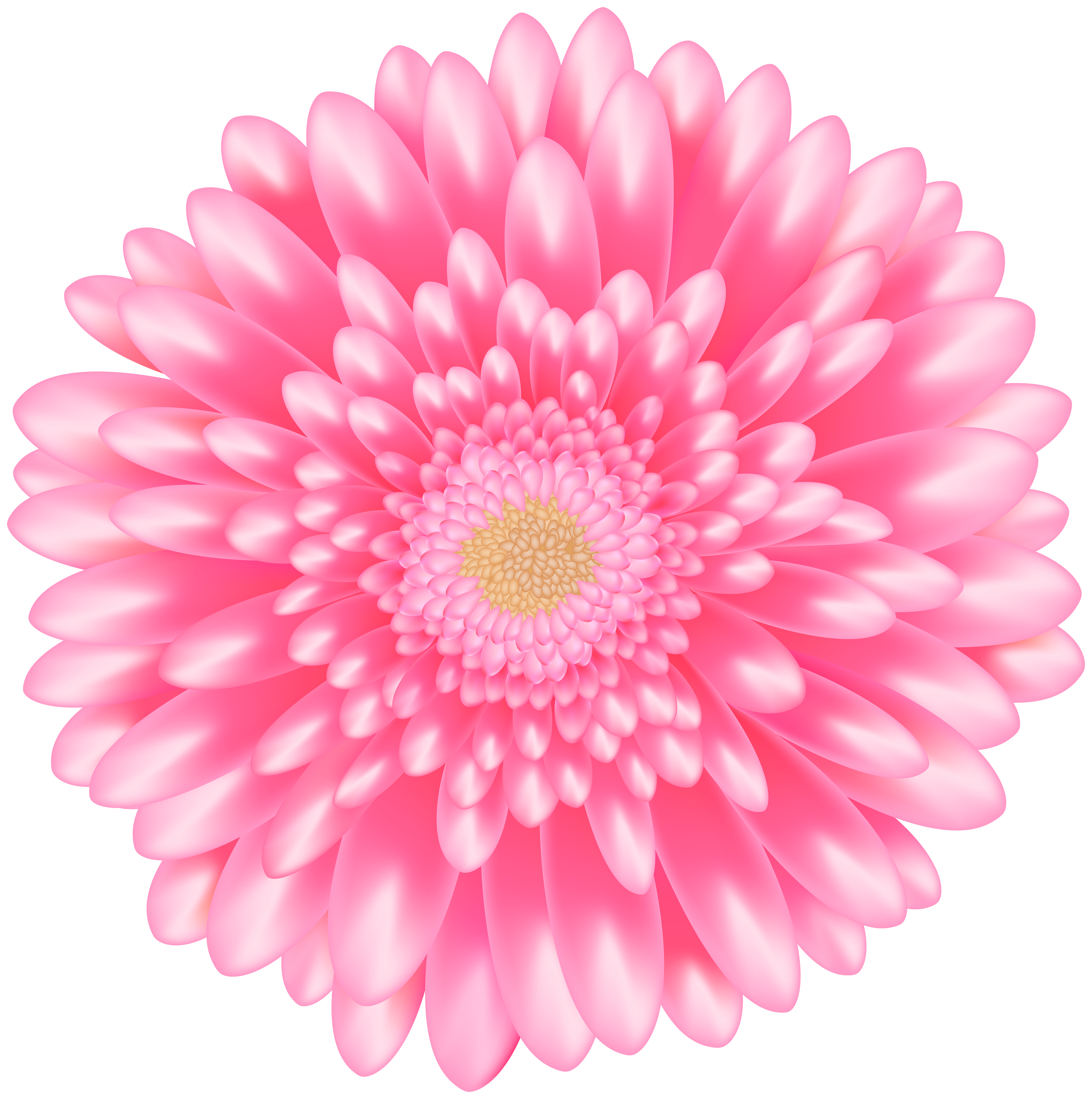 Pink clipart flowers image stock Flower Pink Transparent Clip Art Image | Gallery ... image stock