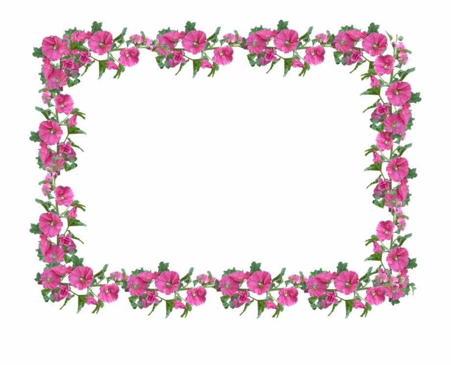 Pink floral frame clipart graphic royalty free download Frame, Border, Hollyhock, Pink, Floral - Frame And Border ... graphic royalty free download