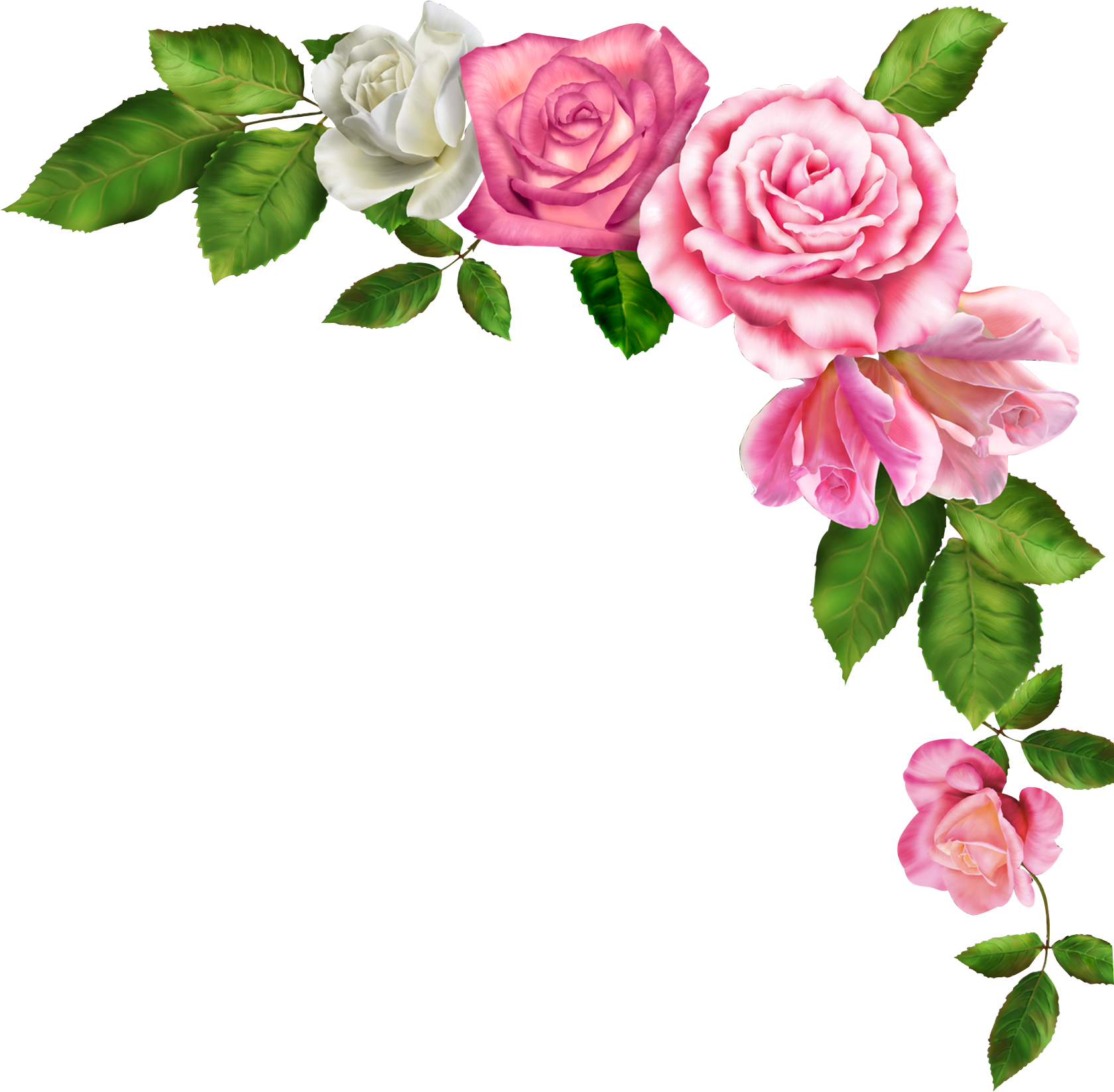 Pink flower border clipart image royalty free stock Borders and Frames Pink flowers Clip art - Watercolor flower 1680 ... image royalty free stock