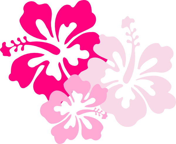 Pink flower clipart png