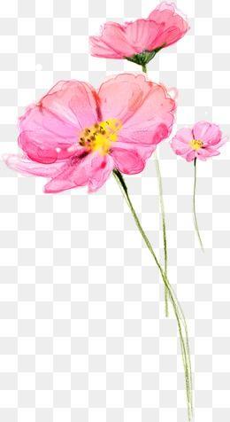 Pink flower vector clipart transparent stock 2019 的 Flower Lotus Pink Flower, Flower Vector, Lotus ... transparent stock