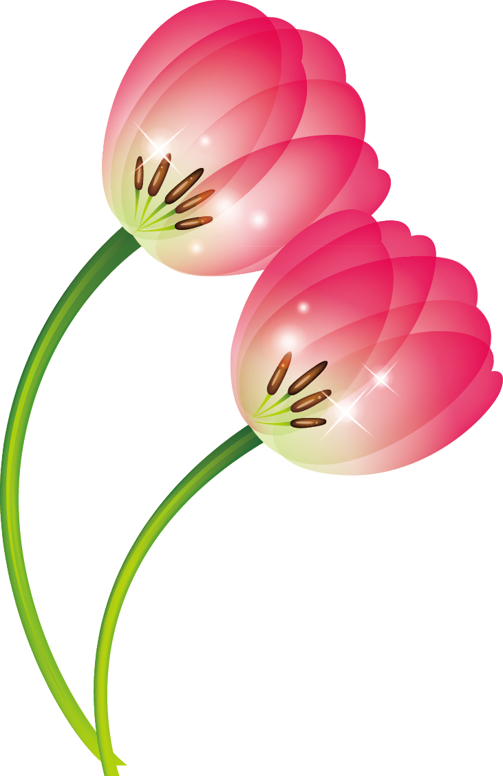 Pink flower with stem clipart image black and white stock Tulip Clip art - tulip 731*1127 transprent Png Free Download - Pink ... image black and white stock