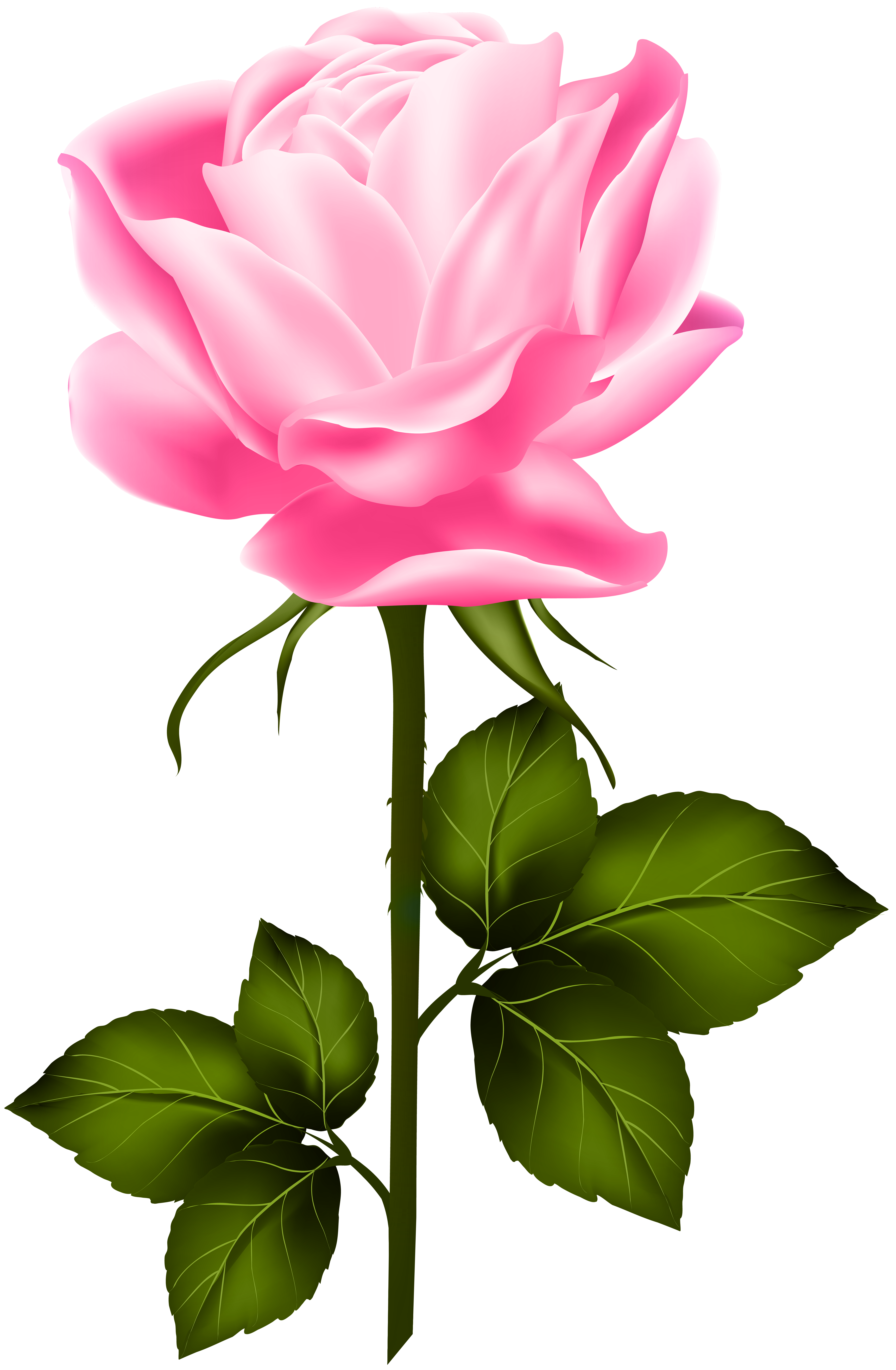 Pink flower with stem clipart clipart library library Pink Rose with Stem PNG Clip Art | Gallery Yopriceville - High ... clipart library library
