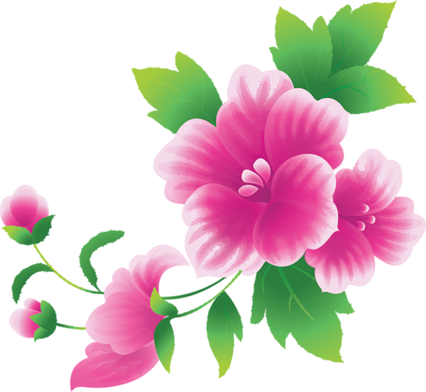 Large flower clipart picture royalty free library Large Pink Flowers Clipart | Balinese flower | Pinterest | Flowers ... picture royalty free library