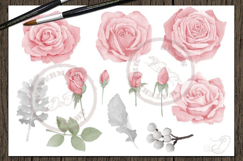 Pink flowers with shadows clipart black and white download Pin by zero00 on Shadow People Photos   Watercolor, Rose ... black and white download