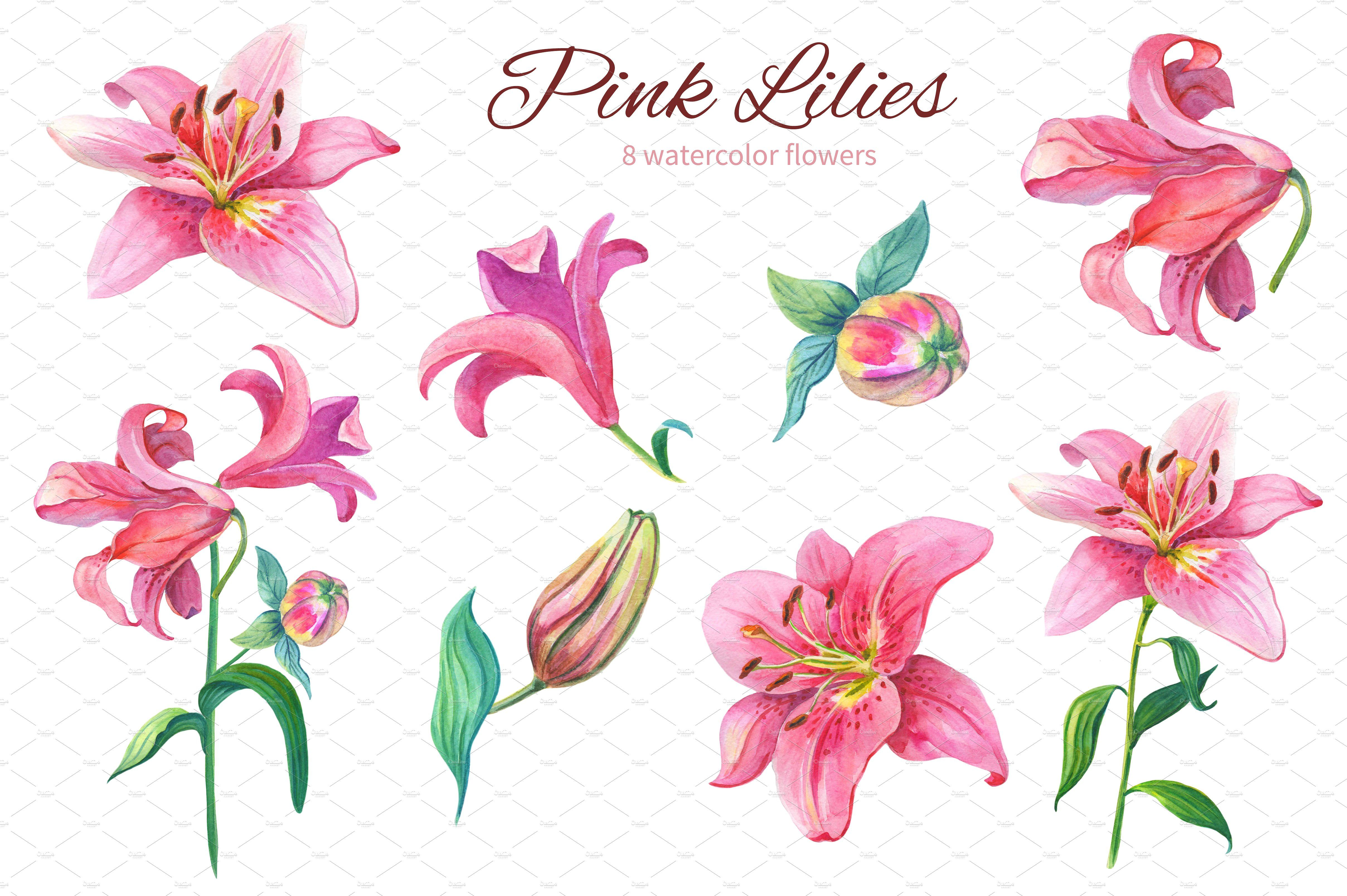 Pink lily clipart image library stock Pink Lilies.Watercolor clipart. #weddings#crafts#parties ... image library stock