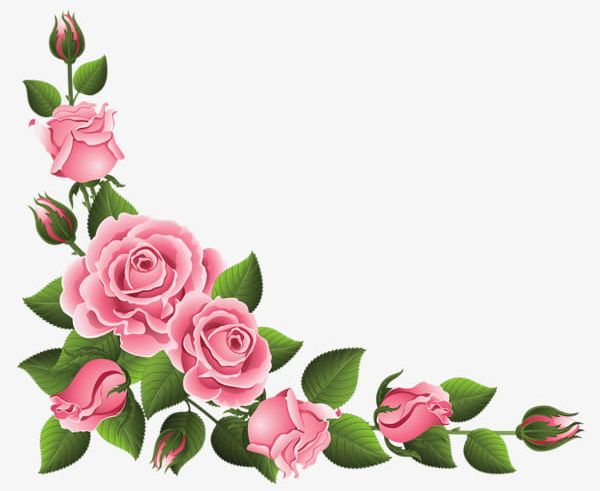 Rose flower border clipart graphic royalty free download Pink Rose Border PNG, Clipart, Border Clipart, Chinese ... graphic royalty free download