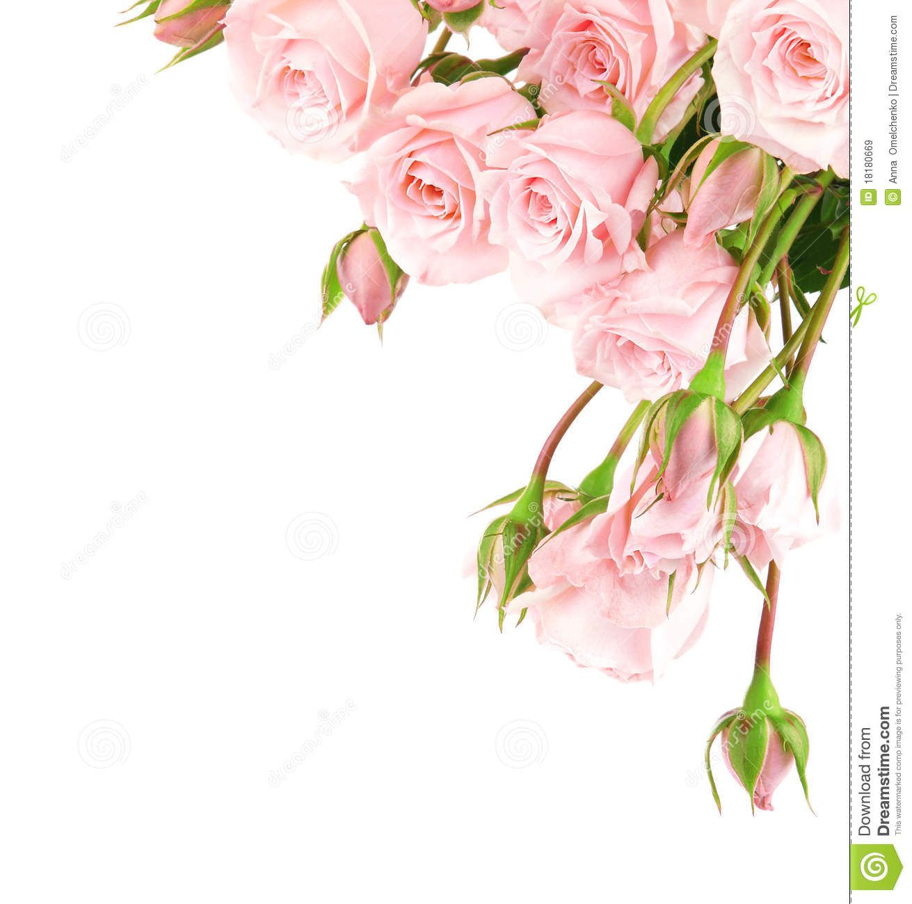 Pink rose border clipart clip art freeuse download Pink Roses Border Clipart Fresh Pink Roses Border | PINK ... clip art freeuse download