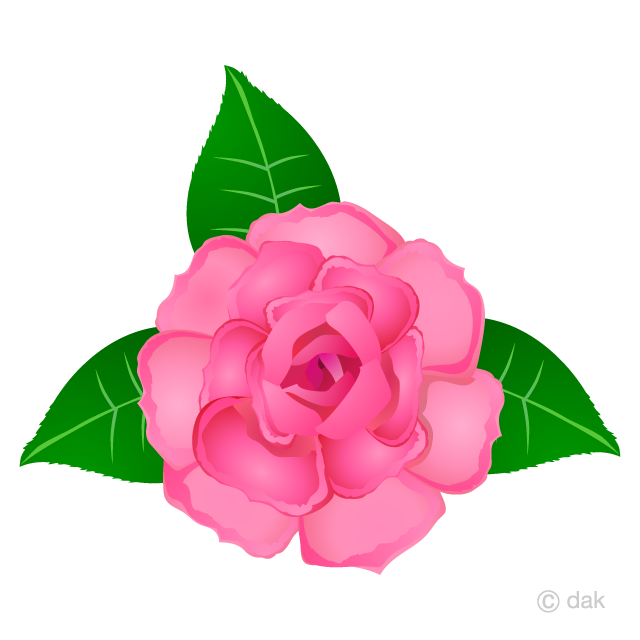 Pink rose flower clipart royalty free Pink Rose Flower Clipart Free Picture|Illustoon royalty free