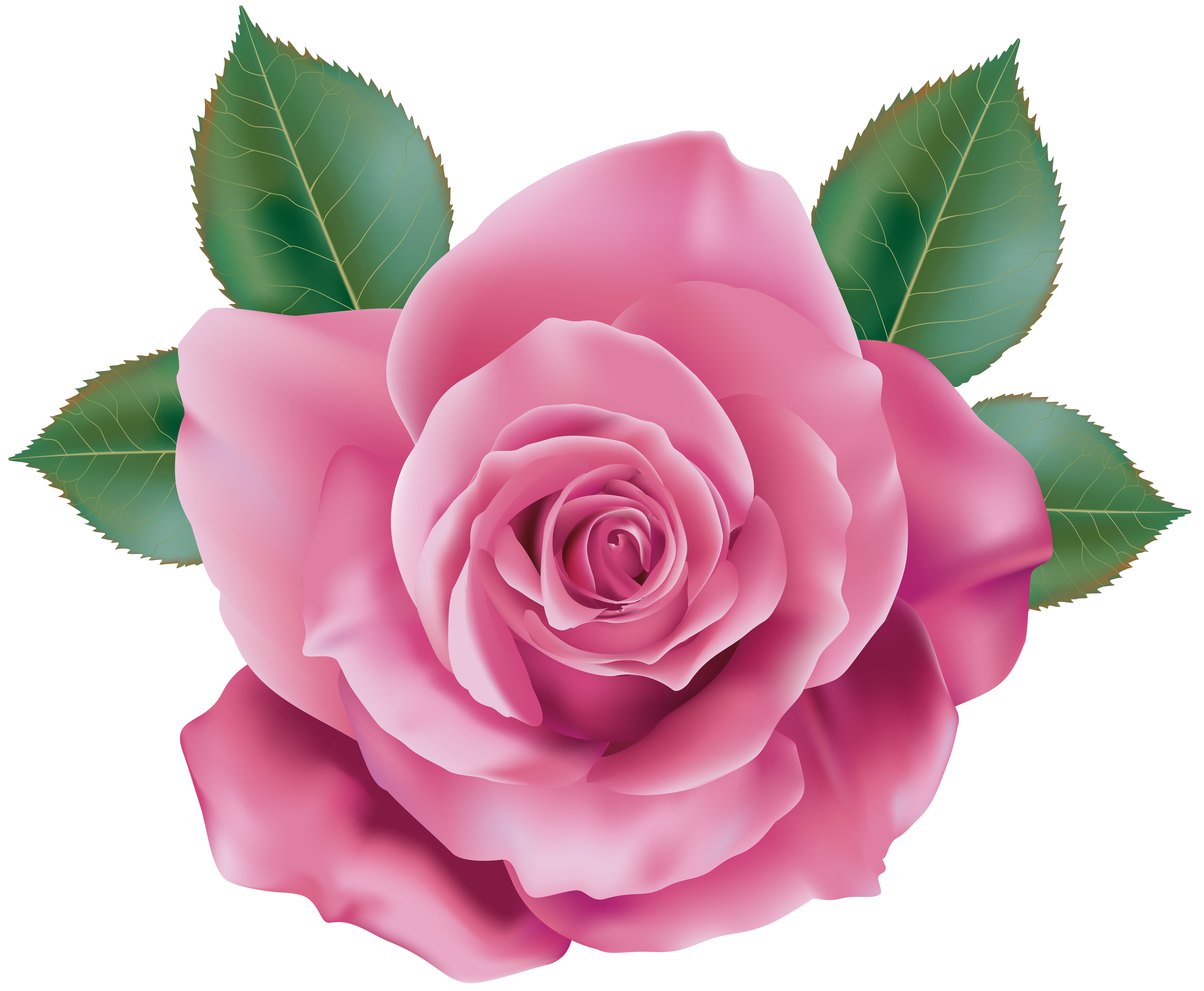 Pink rose flower clipart clip art royalty free Pin by Linda Carter on CLIPART3 | Flowers, Rose clipart ... clip art royalty free