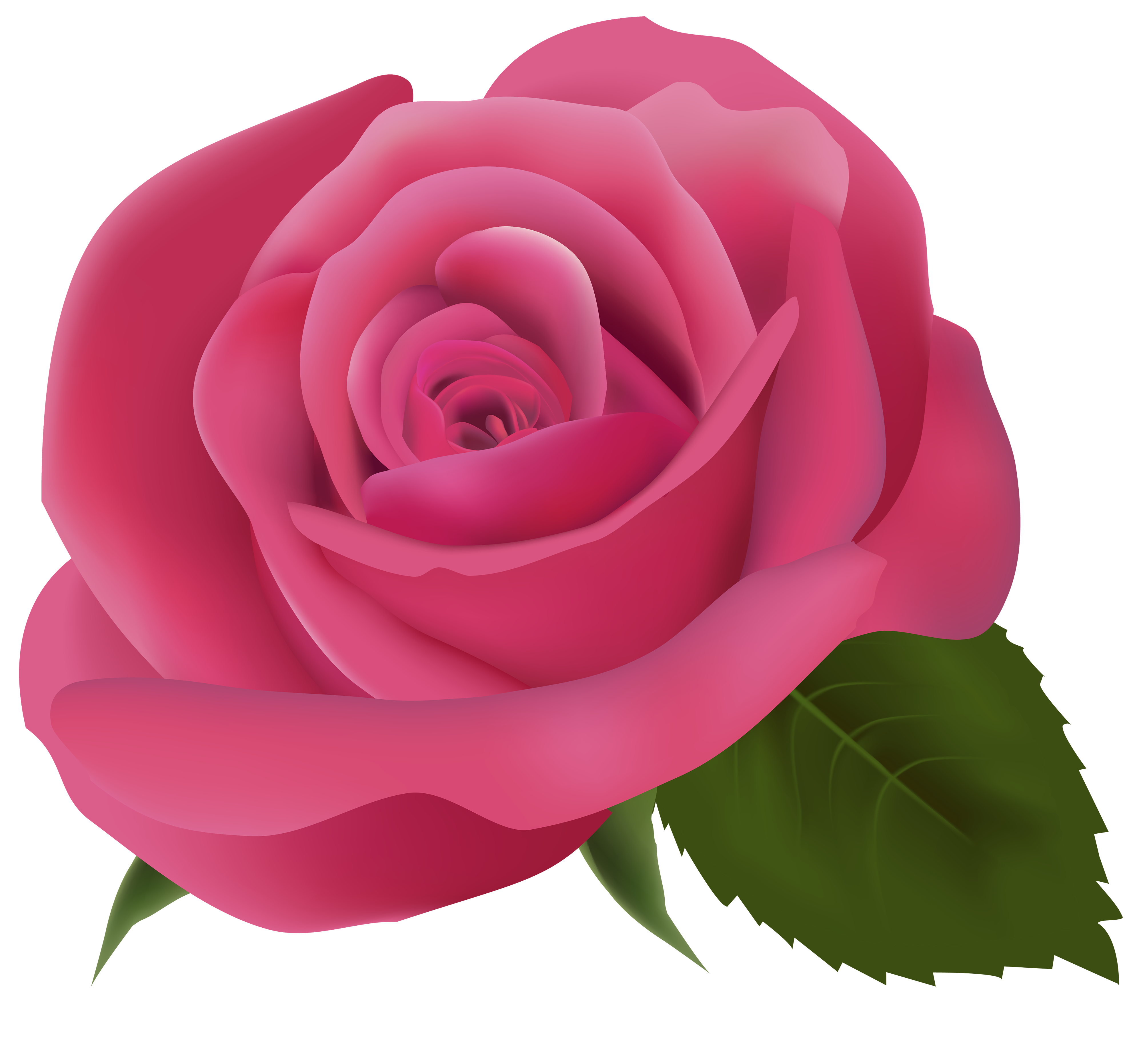 Pink rose flower clipart svg freeuse stock Pink Rose PNG Clipart Image - Best WEB Clipart svg freeuse stock
