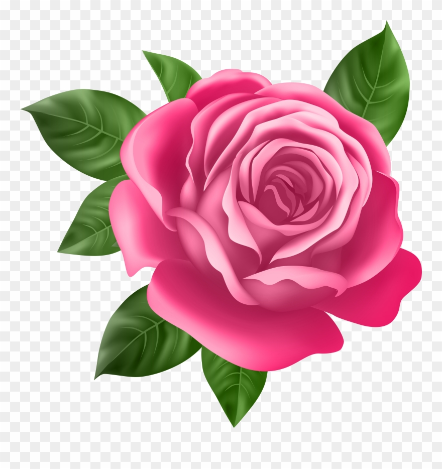 Pink rose flower clipart picture library stock Pink Rose Transparent Png Clip Art - Best Rose Flower ... picture library stock